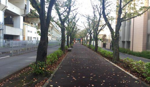 【武蔵浦和・ルヴァン】行き方ガイド(駅から徒歩9分)